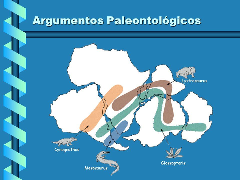 Argumentos Topográficos Ao observar os contornos dos continentes, Wegener verificou que as costas atlânticas da América do Sul e da África apresentava