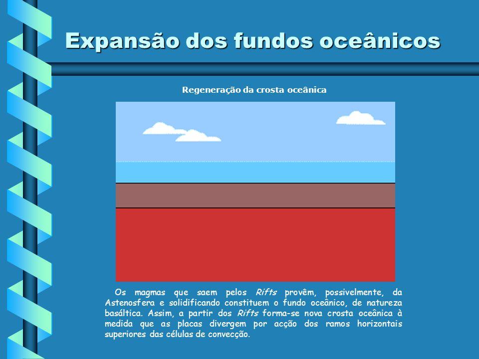 Morfologia dos fundos oceânicos Dorsal Oceânica Rift Plataforma Continental Talude Continental Planície Abissal Fossa Abissal Atenção: Passar a legend