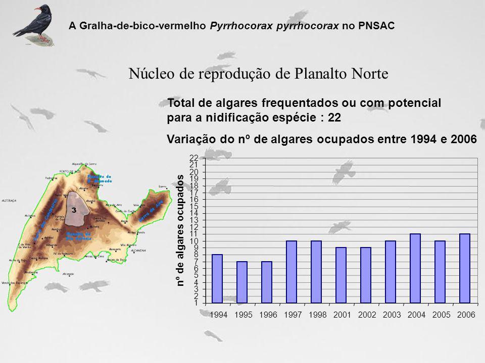 Núcleo de reprodução de Planalto Norte Total de algares frequentados ou com potencial para a nidificação espécie : 22 Variação do nº de algares ocupad