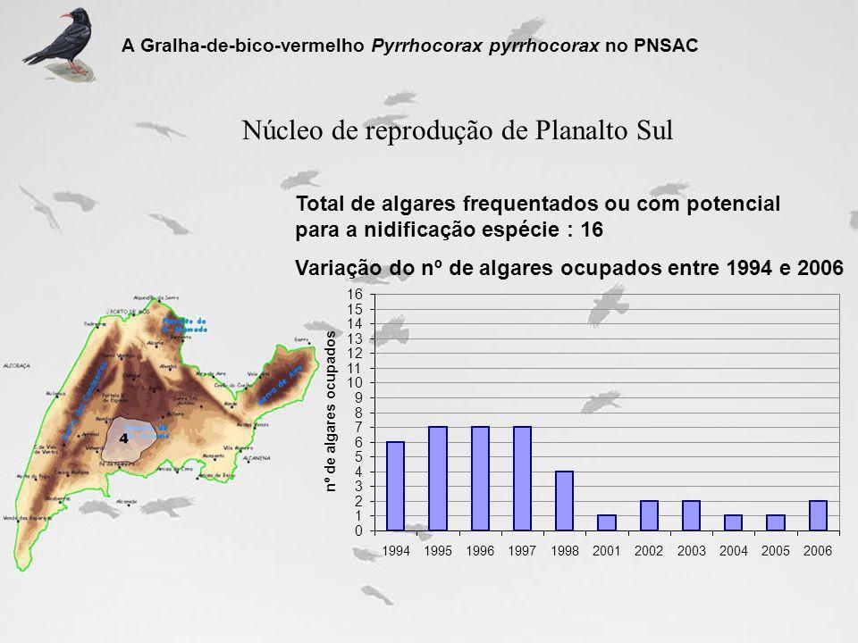 Núcleo de reprodução de Planalto Sul Total de algares frequentados ou com potencial para a nidificação espécie : 16 Variação do nº de algares ocupados