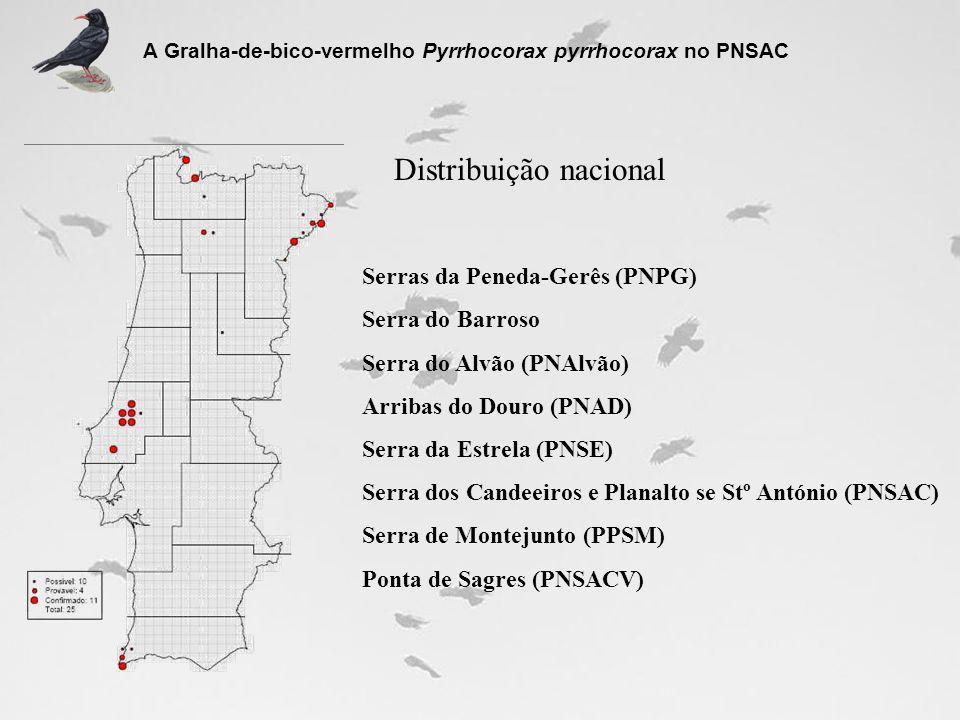 Distribuição nacional Serras da Peneda-Gerês (PNPG) Serra do Barroso Serra do Alvão (PNAlvão) Arribas do Douro (PNAD) Serra da Estrela (PNSE) Serra do