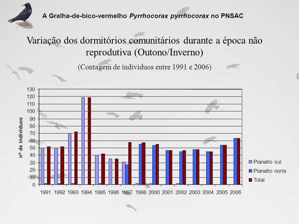 Variação dos dormitórios comunitários durante a época não reprodutiva (Outono/Inverno) (Contagem de indivíduos entre 1991 e 2006) A Gralha-de-bico-ver