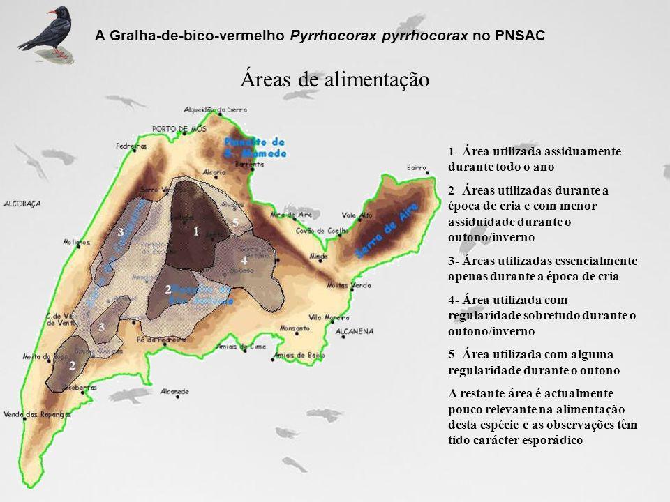 Áreas de alimentação A Gralha-de-bico-vermelho Pyrrhocorax pyrrhocorax no PNSAC 1- Área utilizada assiduamente durante todo o ano 2- Áreas utilizadas