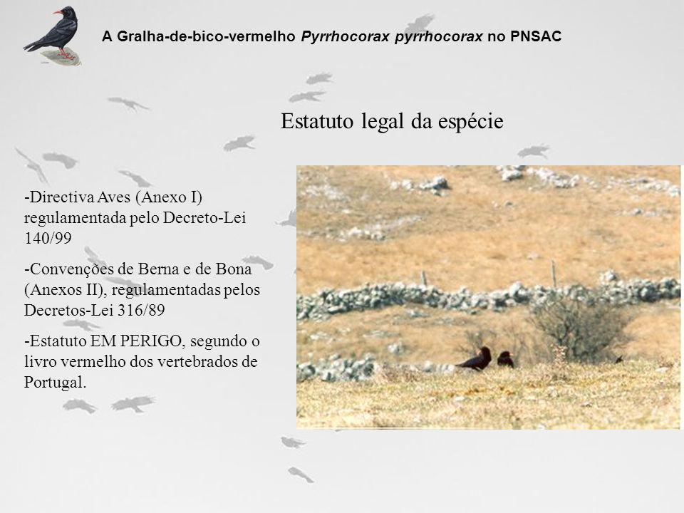 Áreas de alimentação A Gralha-de-bico-vermelho Pyrrhocorax pyrrhocorax no PNSAC 1- Área utilizada assiduamente durante todo o ano 2- Áreas utilizadas durante a época de cria e com menor assiduidade durante o outono/inverno 3- Áreas utilizadas essencialmente apenas durante a época de cria 4- Área utilizada com regularidade sobretudo durante o outono/inverno 5- Área utilizada com alguma regularidade durante o outono A restante área é actualmente pouco relevante na alimentação desta espécie e as observações têm tido carácter esporádico