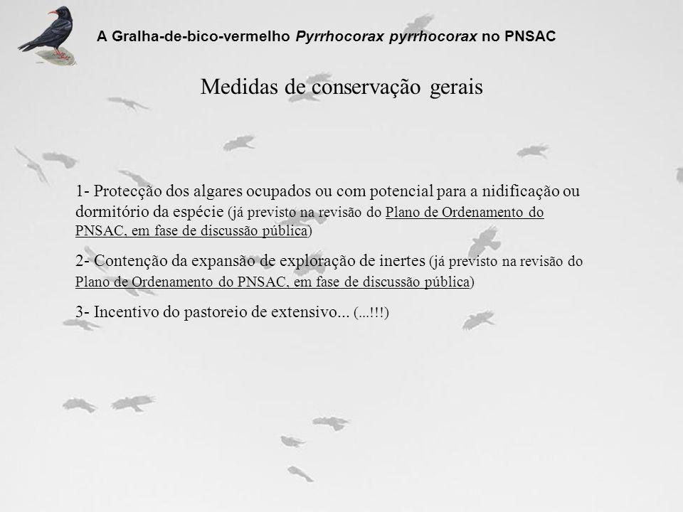 Medidas de conservação gerais A Gralha-de-bico-vermelho Pyrrhocorax pyrrhocorax no PNSAC 1- Protecção dos algares ocupados ou com potencial para a nid