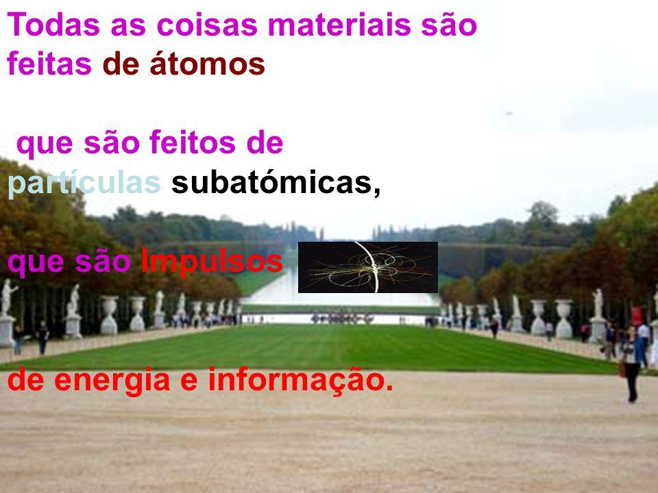 Todas as coisas materiais são feitas de átomos que são feitos de partículas subatómicas, que são Impulsos de energia e informação.