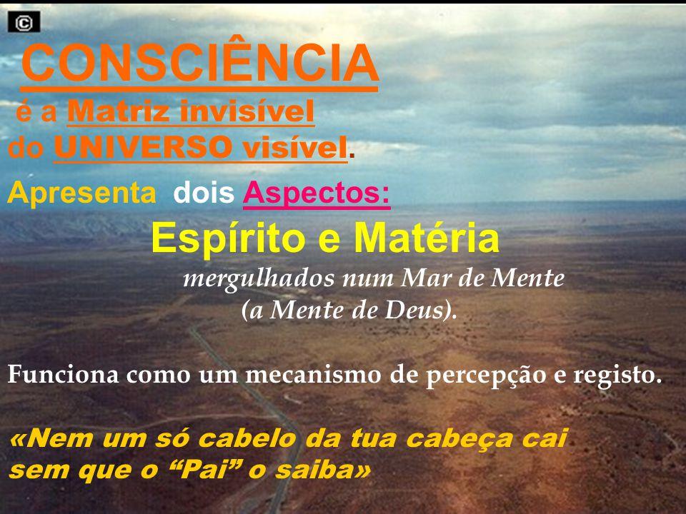 CONSCIÊNCIA é a Matriz invisível do UNIVERSO visível. Apresenta dois Aspectos: Espírito e Matéria mergulhados num Mar de Mente (a Mente de Deus). Func
