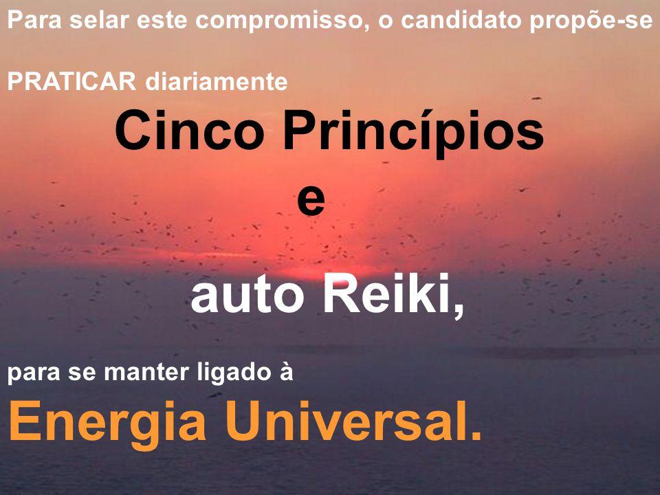 Para selar este compromisso, o candidato propõe-se PRATICAR diariamente Cinco Princípios e auto Reiki, para se manter ligado à Energia Universal.