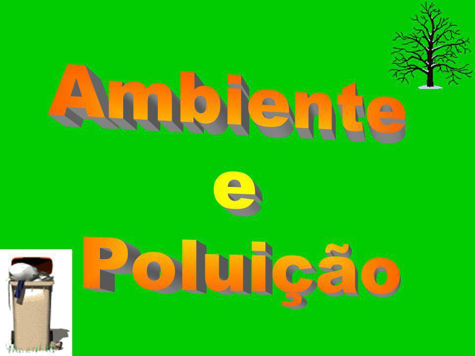 Ana Luísa Seara N.º 3 Beatriz Almeida N.º 7 Donata Pinto N.º 16