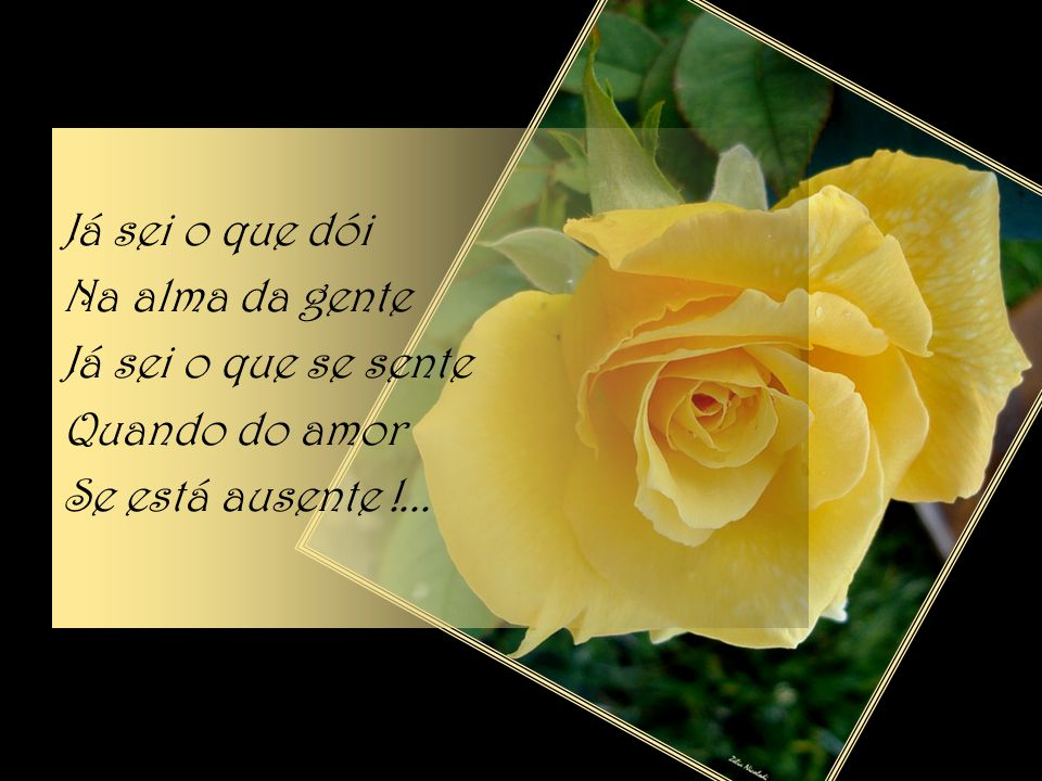 Já sei o que é o amor Já sei o que é amar Já sei o que é viver Sem amor E sem o ter!...