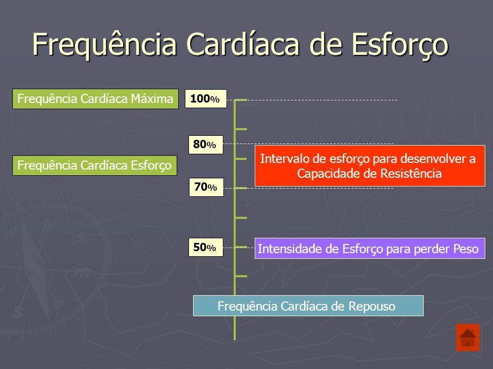Frequência Cardíaca de Esforço 100 % 80 % 70 % Frequência Cardíaca Máxima Frequência Cardíaca Esforço 50 % Exemplo: Pessoa - 15 anos Frequência Cardíaca Máxima = 220 – Idade 220 – 15 = 205 Bat./min.