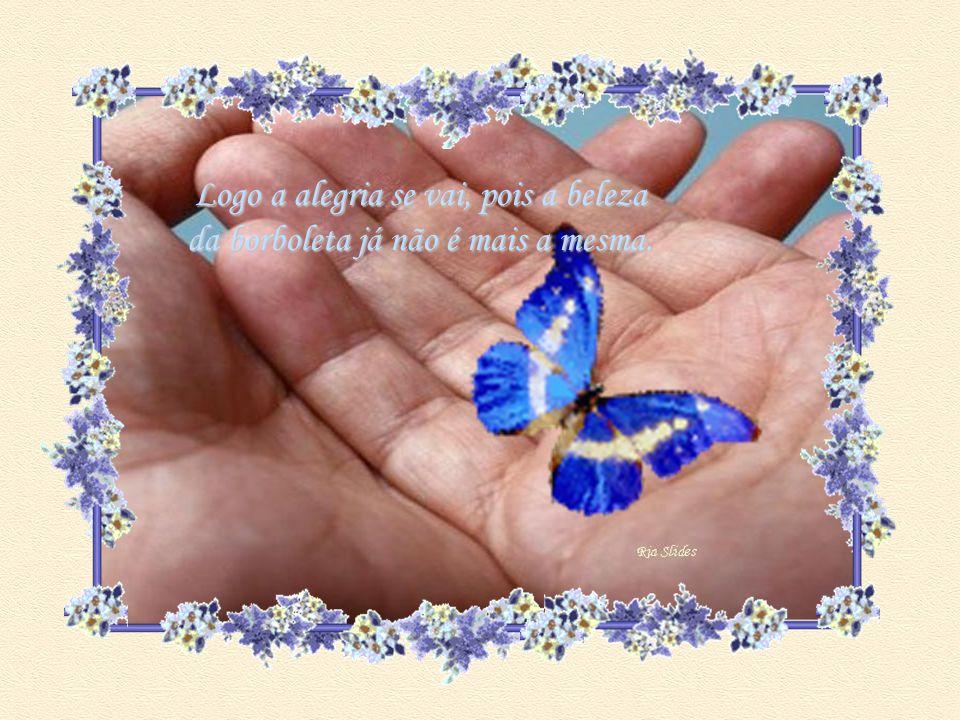 Logo a alegria se vai, pois a beleza da borboleta já não é mais a mesma.