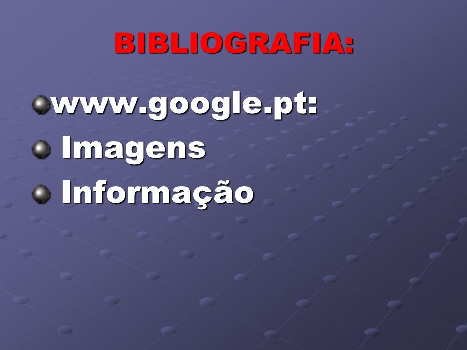 BIBLIOGRAFIA: www.google.pt: Imagens Imagens Informação Informação