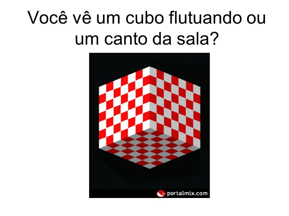 Você vê um cubo flutuando ou um canto da sala?