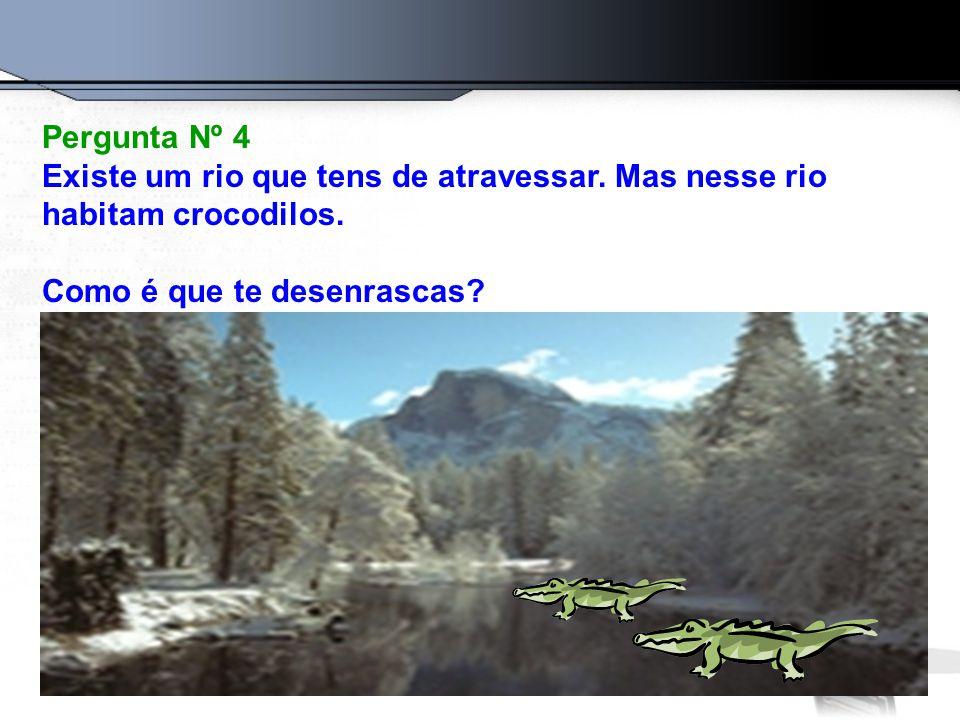 Pergunta Nº 4 Existe um rio que tens de atravessar. Mas nesse rio habitam crocodilos. Como é que te desenrascas?