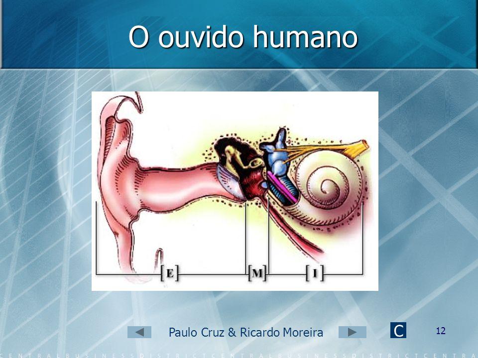 Paulo Cruz & Ricardo Moreira 11 Propriedades do som (6) Timbre Permite distinguir dois sons com a mesma altura e intensidade, produzidos por fontes so