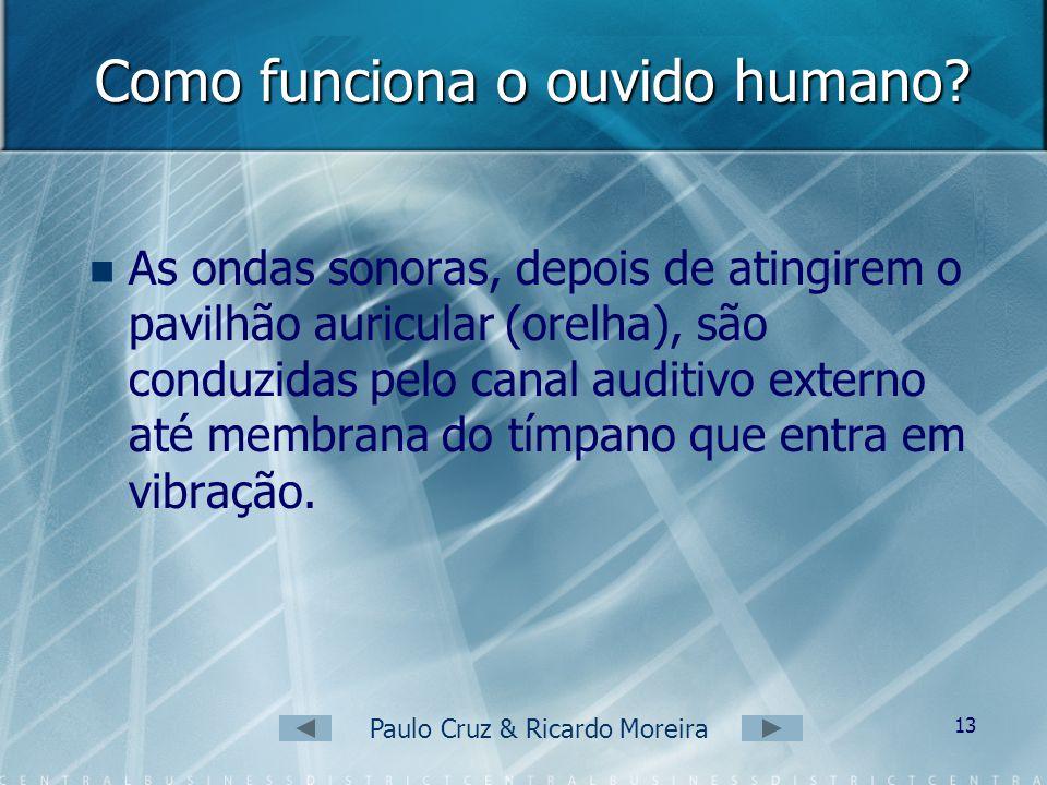 Paulo Cruz & Ricardo Moreira 12 O ouvido humano C