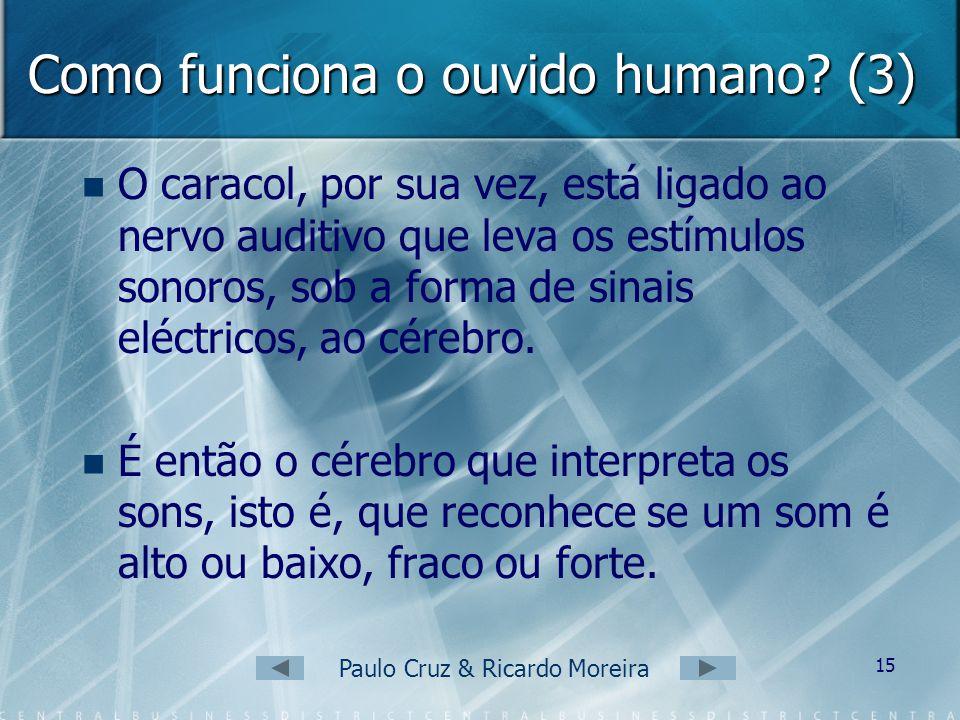 Paulo Cruz & Ricardo Moreira 14 Como funciona o ouvido humano? (2) Em seguida, as vibrações do tímpano são amplificadas pelos ossículos (martelo, bigo