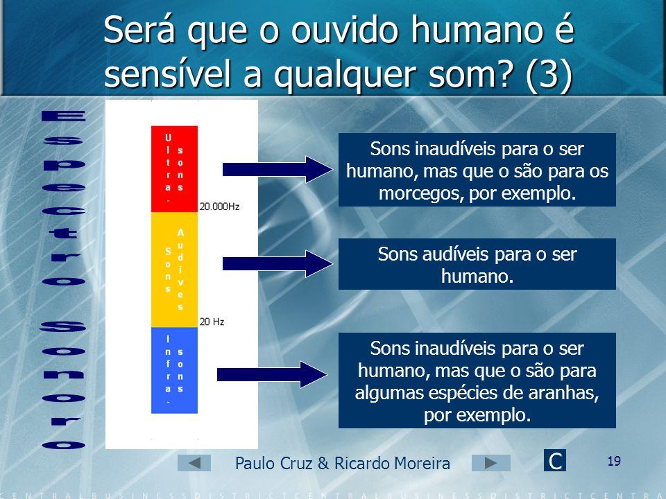 Paulo Cruz & Ricardo Moreira 18 Será que o ouvido humano é sensível a qualquer som? (2) Ultra-sons: sons de frequência superior a 20000Hz; sons inaudí