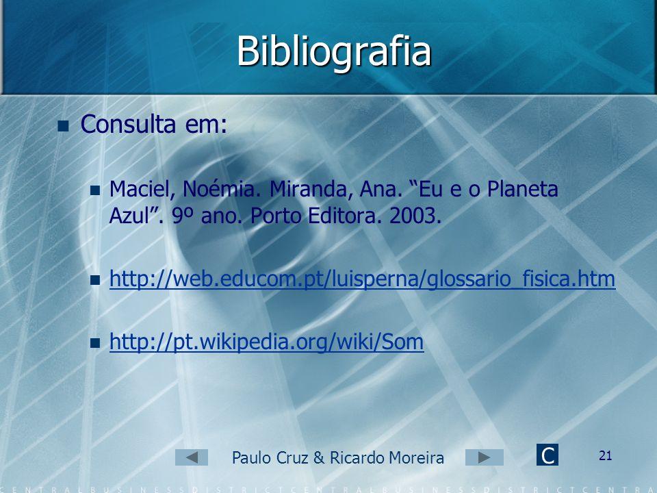 Paulo Cruz & Ricardo Moreira 20 Conclusão Com a realização deste trabalho ficamos a conhecer melhor o que é o som e as suas propriedades bem como o fu