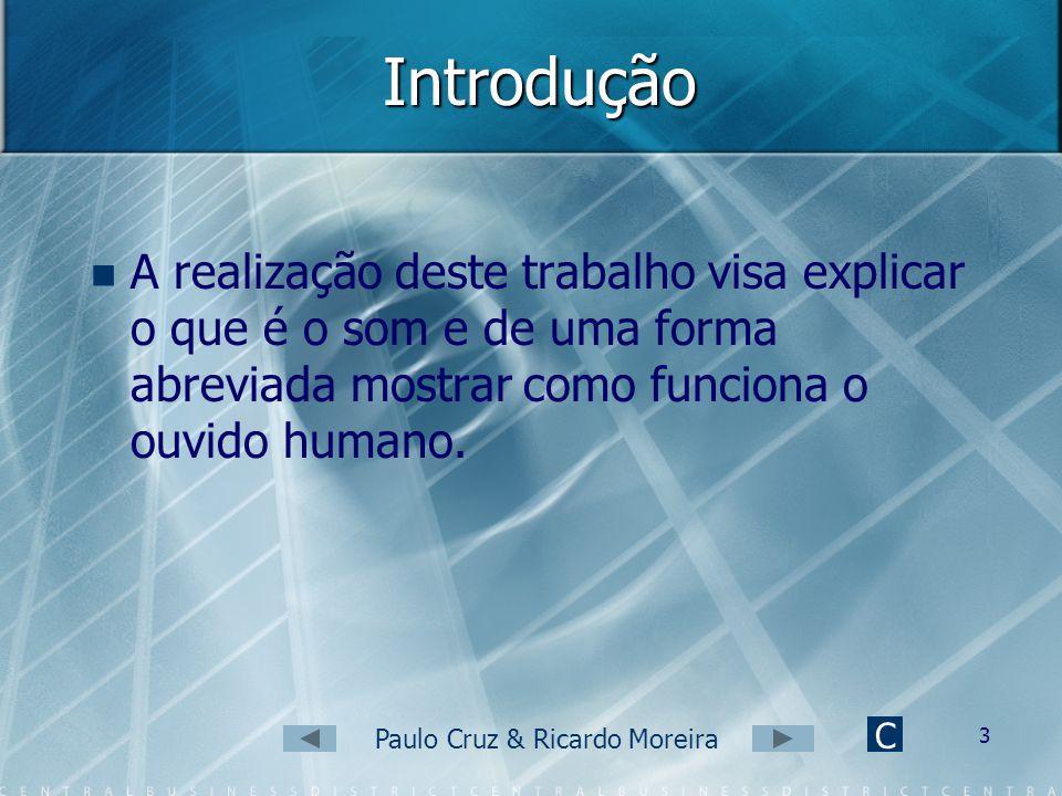 Paulo Cruz & Ricardo Moreira 2 Conteúdos Introdução O que é o som? Porque ouvimos? Propriedades do Som O ouvido Humano Como funciona o ouvido humano?