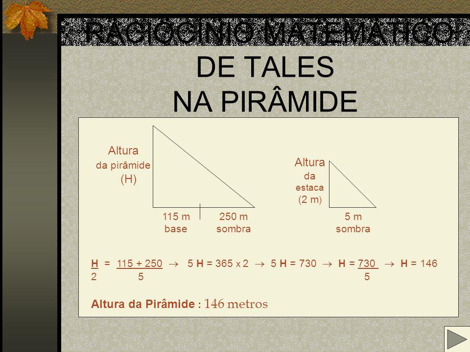 O raciocínio de Tales nas pirâmides estaca
