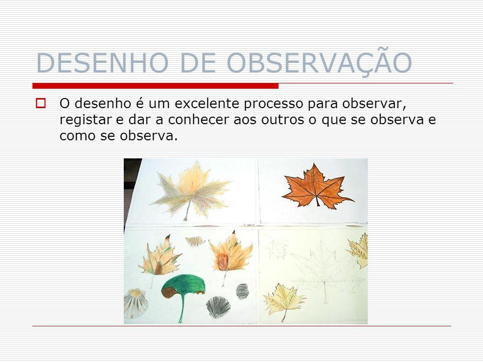 DESENHO DE OBSERVAÇÃO O desenho pode ser um excelente meio de comunicação e, portanto, de entendimento entre pessoas.