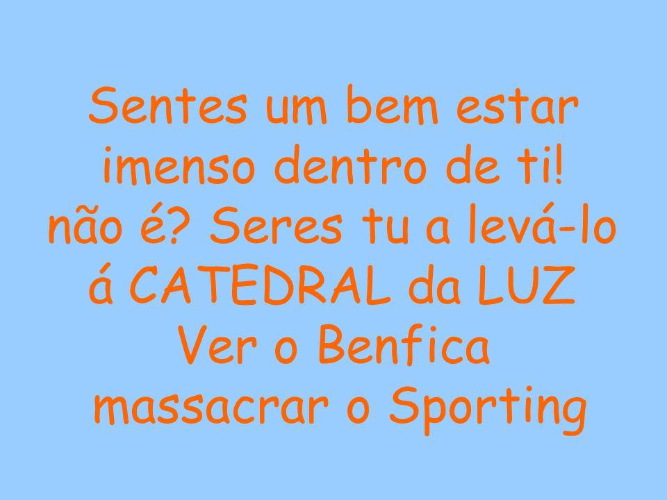 O cheiro da relva recentemente cortada, a magia do Simão nos dribles, a loucura do público quando o Benfica marca aos lagartos...