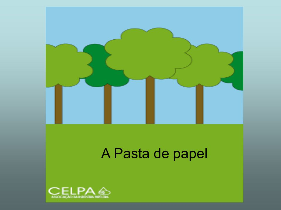 A pasta de papel é feita com as fibras da madeira das árvores