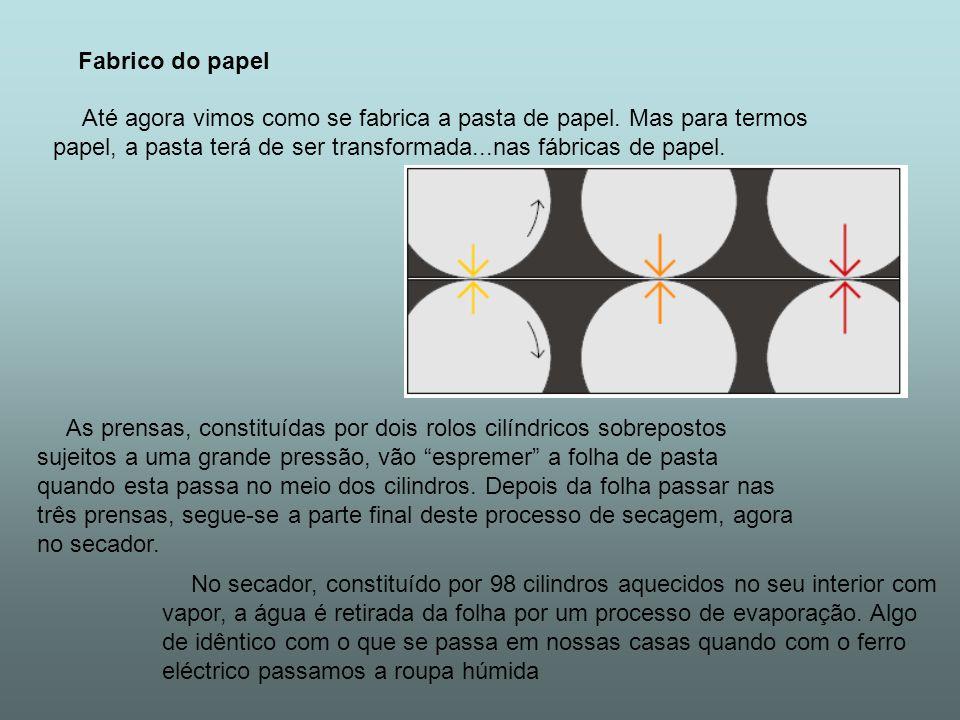 Fabrico do papel Até agora vimos como se fabrica a pasta de papel. Mas para termos papel, a pasta terá de ser transformada...nas fábricas de papel. As