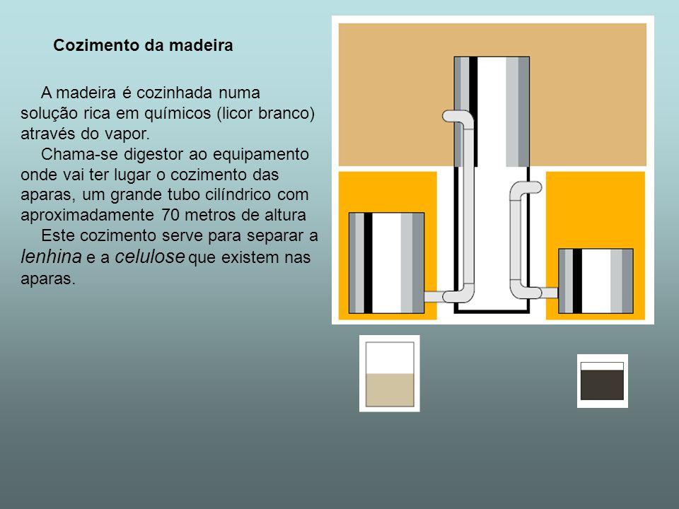 Cozimento da madeira A madeira é cozinhada numa solução rica em químicos (licor branco) através do vapor. Chama-se digestor ao equipamento onde vai te