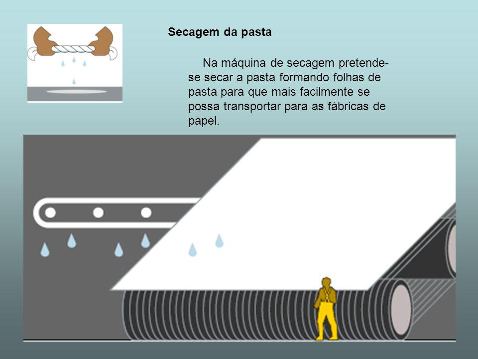 Secagem da pasta Na máquina de secagem pretende- se secar a pasta formando folhas de pasta para que mais facilmente se possa transportar para as fábri