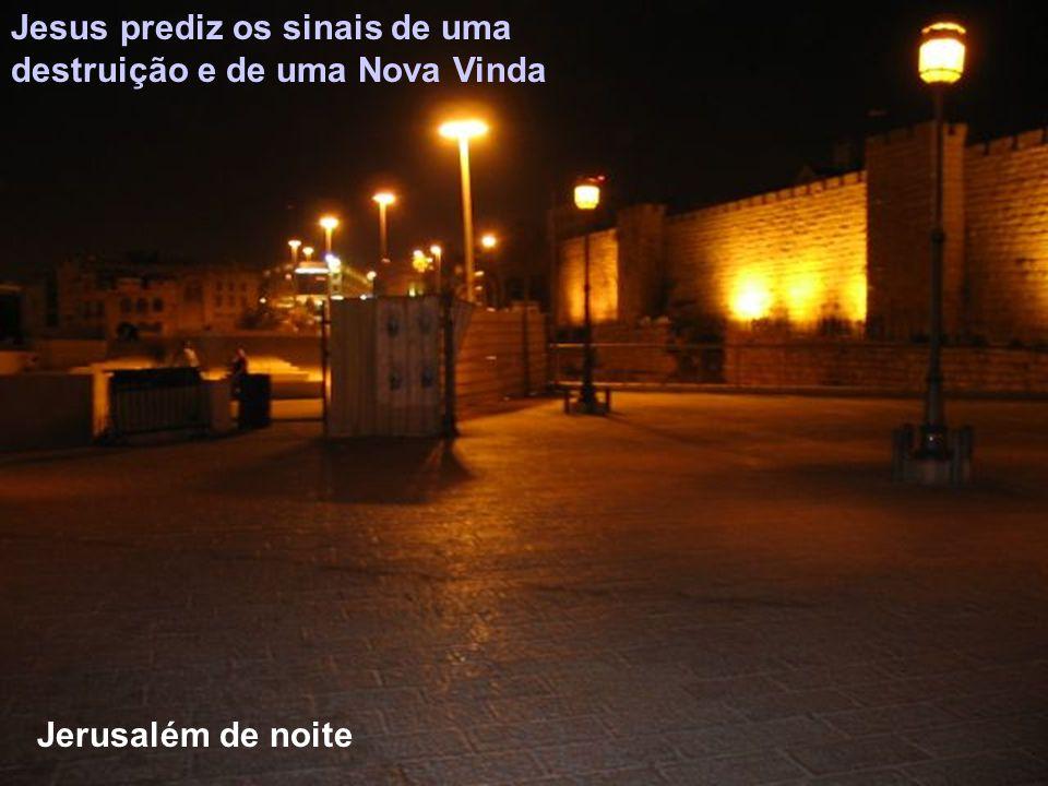 ADVENTO Ciclo C DOMINGO 1 Caminhar vigiando para nos mantermos firmes no dia da Sua vinda DOMINGO 2 Aplanar o caminho com João Baptista DOMINGO 3 Deus