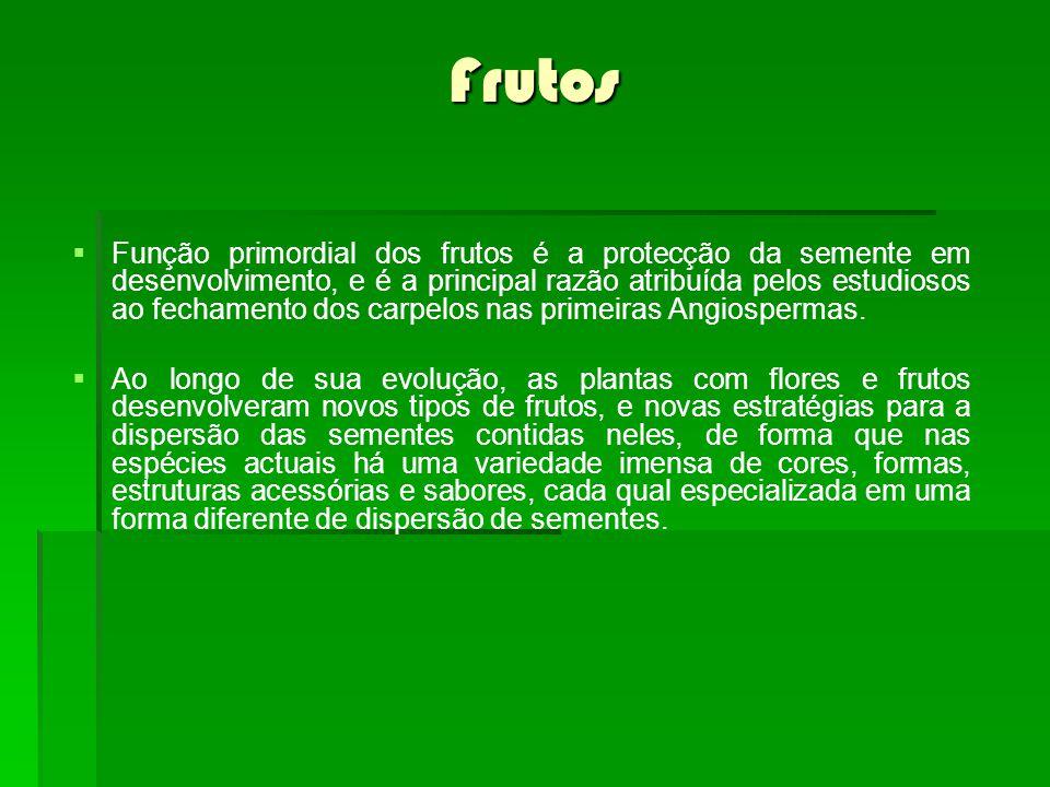Frutos Função primordial dos frutos é a protecção da semente em desenvolvimento, e é a principal razão atribuída pelos estudiosos ao fechamento dos carpelos nas primeiras Angiospermas.