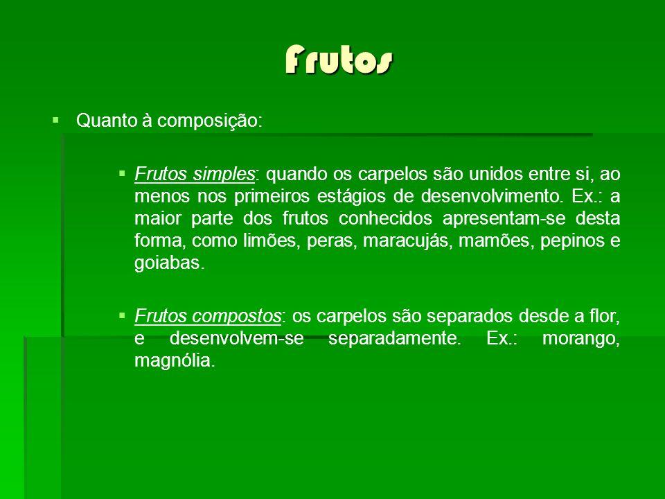 Frutos Quanto à composição: Frutos simples: quando os carpelos são unidos entre si, ao menos nos primeiros estágios de desenvolvimento. Ex.: a maior p
