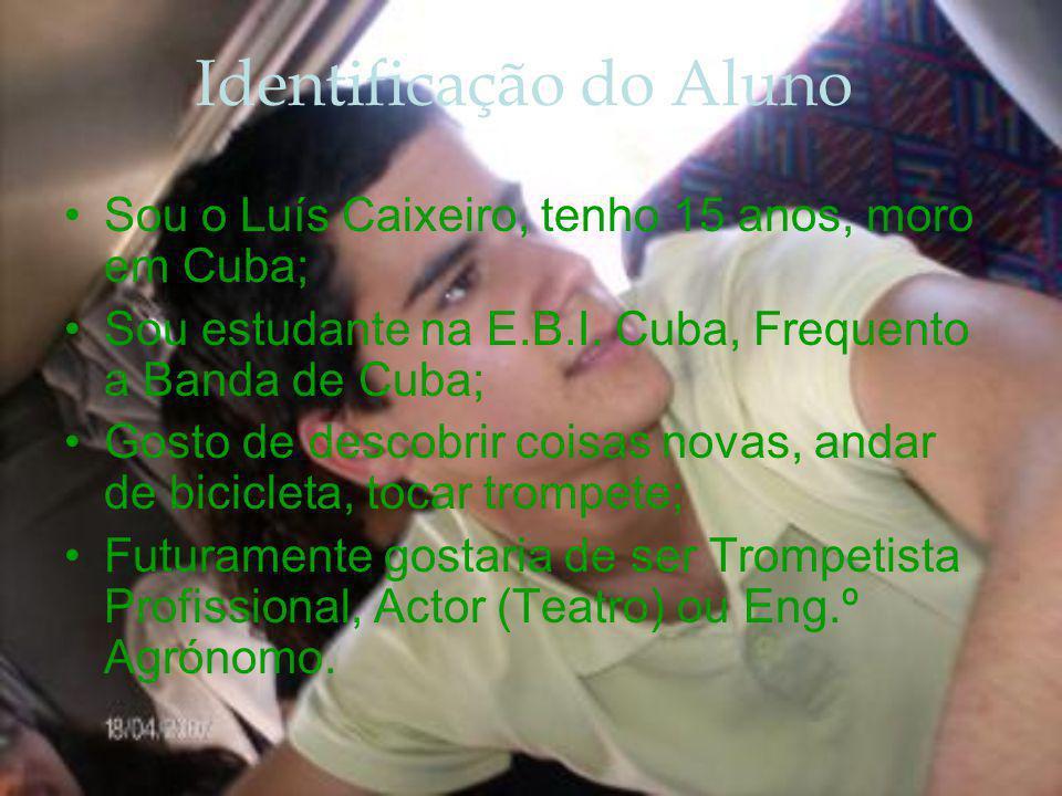 Identificação do Aluno Sou o Luís Caixeiro, tenho 15 anos, moro em Cuba; Sou estudante na E.B.I. Cuba, Frequento a Banda de Cuba; Gosto de descobrir c