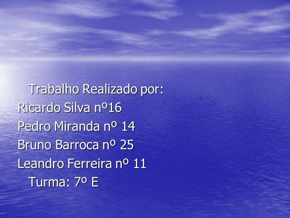 Trabalho Realizado por: Ricardo Silva nº16 Pedro Miranda nº 14 Bruno Barroca nº 25 Leandro Ferreira nº 11 Turma: 7º E
