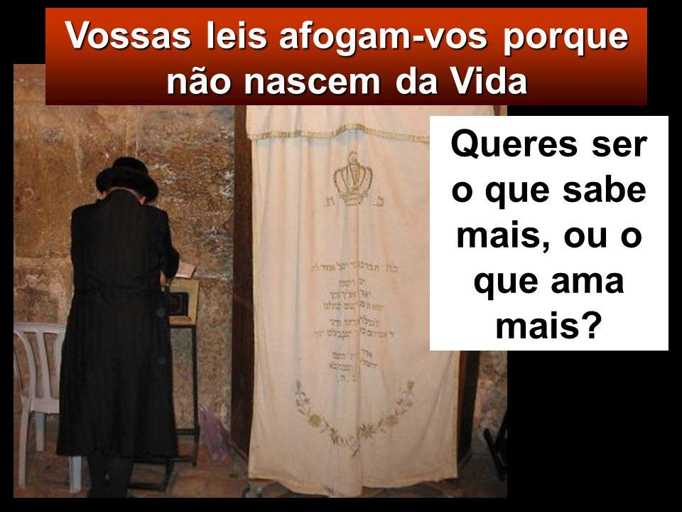Mt 22, 34-40 Naquele tempo, os fariseus, ouvindo dizer que Jesus tinha feito calar os saduceus, reuniram-se em grupo, e um doutor da Lei, perguntou a
