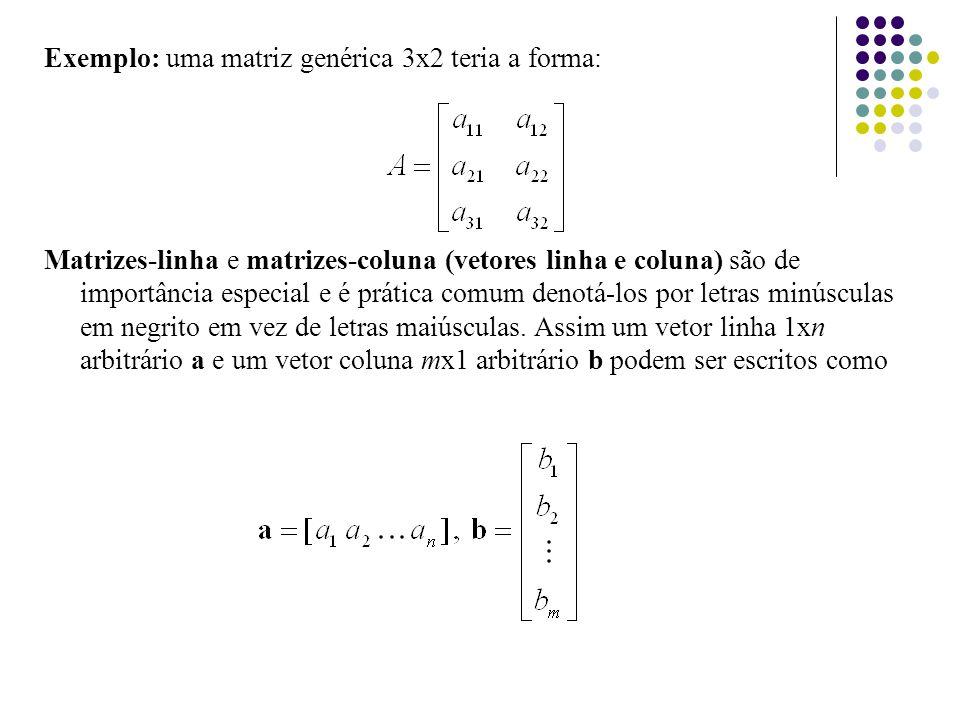 Exemplo: uma matriz genérica 3x2 teria a forma: Matrizes-linha e matrizes-coluna (vetores linha e coluna) são de importância especial e é prática comu