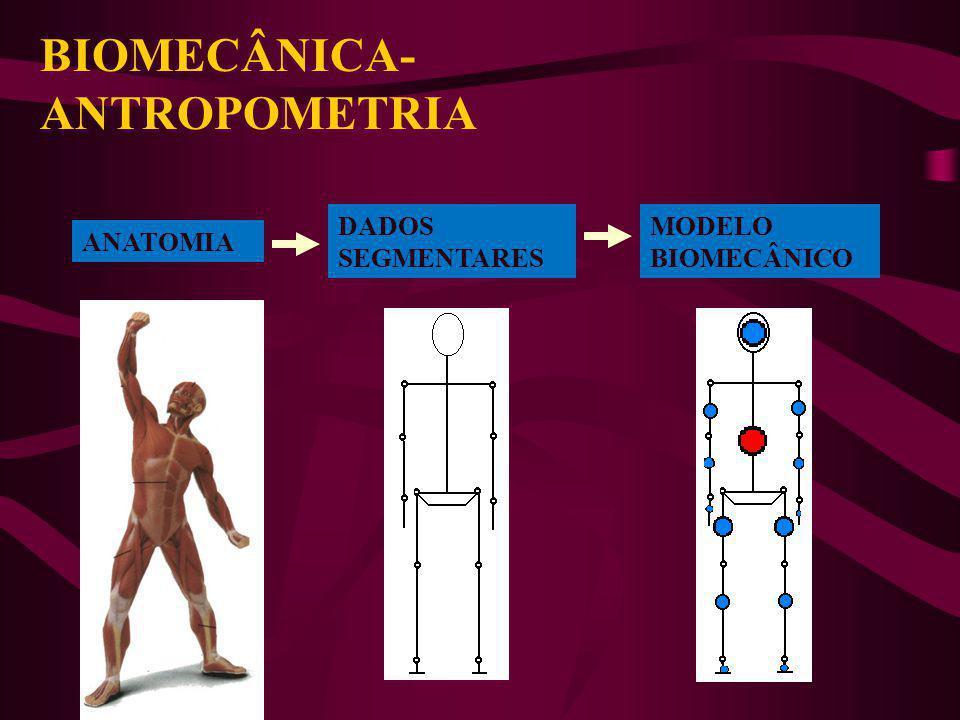 MASSA E CENTRO DE MASSA EXEMPLO WINTER (1990) MEDIDAS: PÊSO = 80 kg