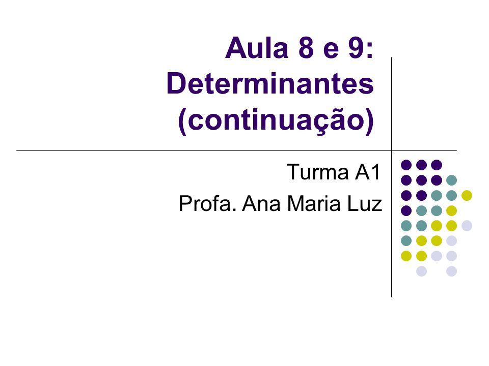 Aula 8 e 9: Determinantes (continuação) Turma A1 Profa. Ana Maria Luz
