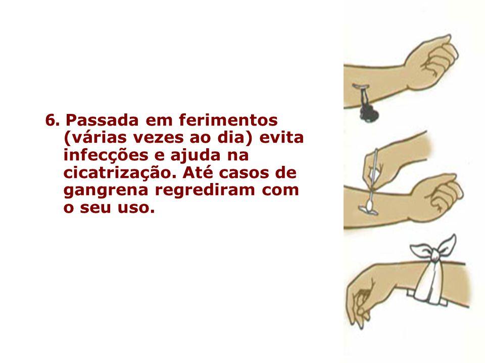 6. Passada em ferimentos (várias vezes ao dia) evita infecções e ajuda na cicatrização. Até casos de gangrena regrediram com o seu uso.