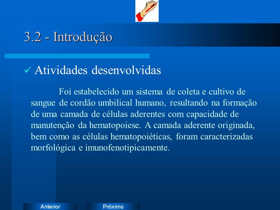 PróximoAnterior 3.2 - Introdução Atividades desenvolvidas Foi estabelecido um sistema de coleta e cultivo de sangue de cordão umbilical humano, result