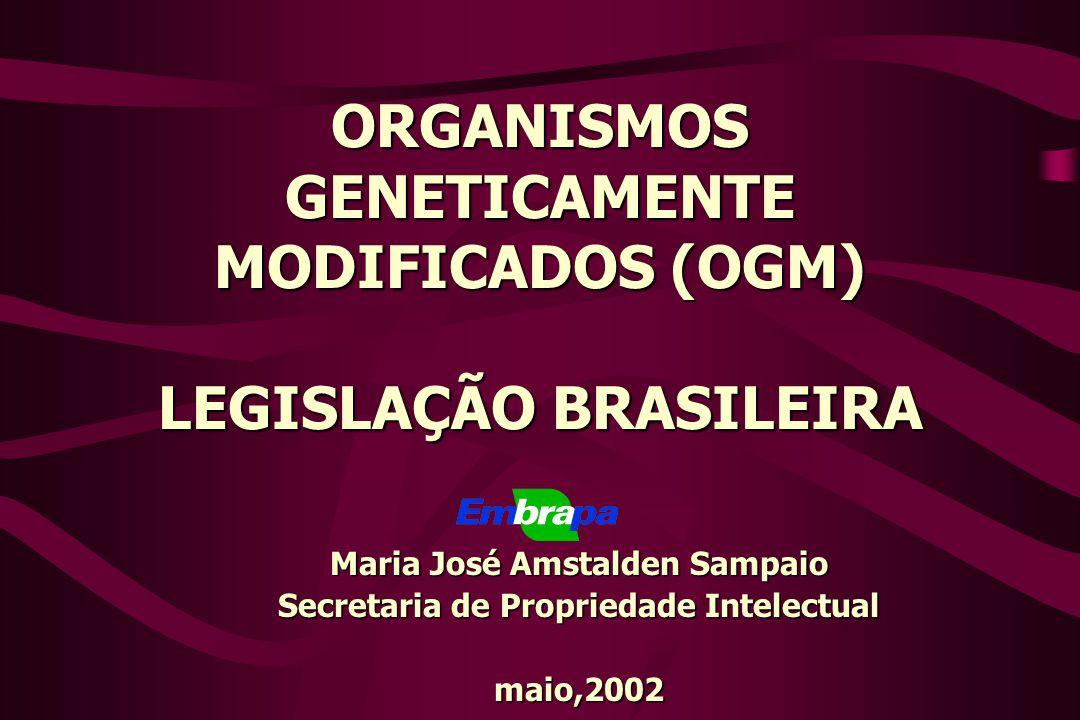 ORGANISMOS GENETICAMENTE MODIFICADOS (OGM) LEGISLAÇÃO BRASILEIRA Maria José Amstalden Sampaio Secretaria de Propriedade Intelectual maio,2002