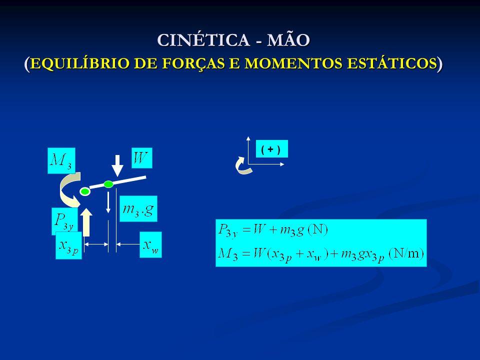 CINÉTICA - ANTEBRAÇO (EQUILÍBRIO DE FORÇAS E MOMENTOS ESTÁTICOS) ( + )