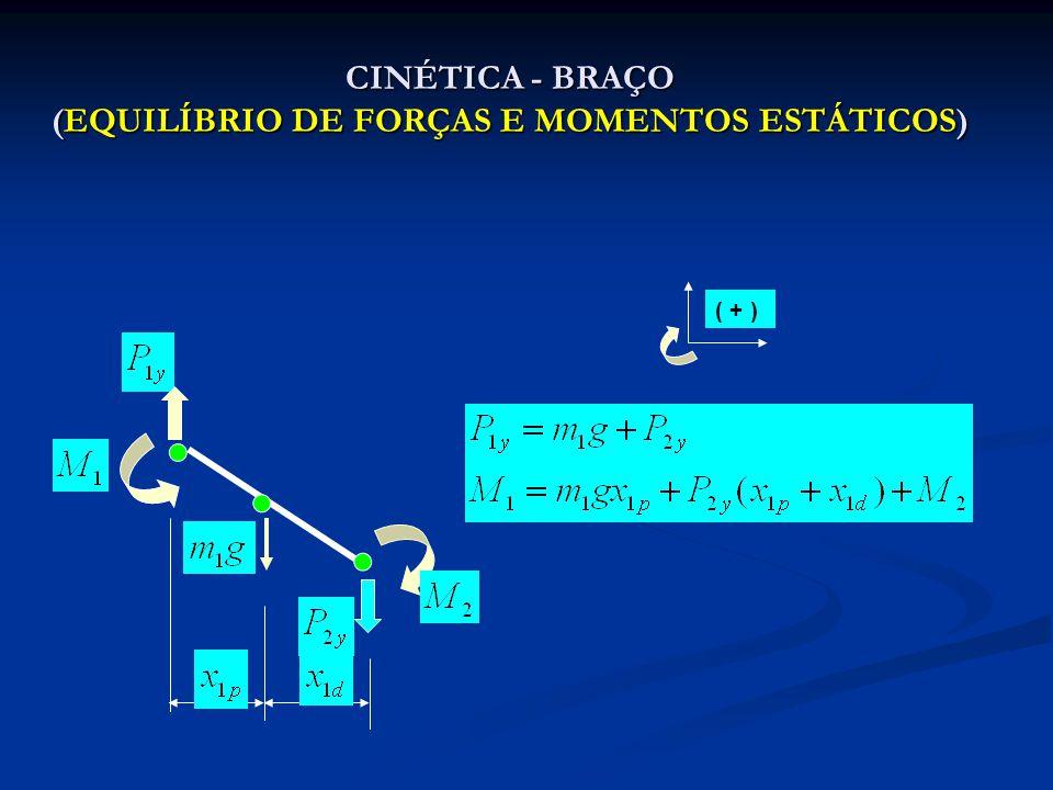 CINÉTICA - FLUXOGRAMA (EQUILÍBRIO DE FORÇAS E MOMENTOS ESTÁTICOS) DADOS: COORDENADAS (X,Y) DADOS: ANTROPOMÉTRICO MASSAS ACELERAÇÃO GRAV.