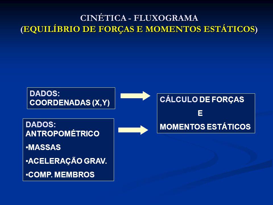 CINÉTICA - FLUXOGRAMA (EQUILÍBRIO DE FORÇAS E MOMENTOS DINÂMICOS) DADOS: COORDENADAS (X,Y) DADOS: ANTROPOMÉTRICO MASSAS E CM MOMENTO DE INÉRCIA ACELERAÇÃO GRAV.