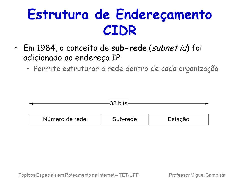 Tópicos Especiais em Roteamento na Internet – TET/UFF Professor Miguel Campista Estrutura de Endereçamento CIDR Em 1984, o conceito de sub-rede (subnet id) foi adicionado ao endereço IP –Permite estruturar a rede dentro de cada organização