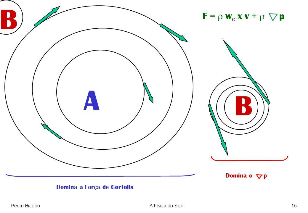 Pedro BicudoA Física do Surf15 A B Domina a Força de Coriolis Domina o p F = w c x v + p B
