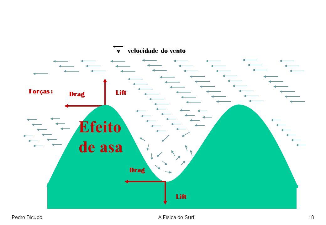 Pedro BicudoA Física do Surf18 v velocidade do vento Lift Drag Efeito de asa Lift Drag Forças :